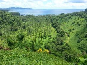 Fiji - Taveuni Island