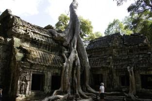 Angkor Thom - Siem Reap - Cambodia